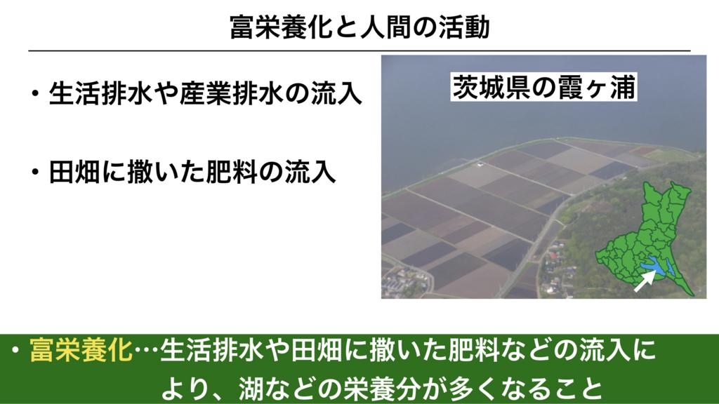 f:id:shimasensei:20180422181804j:plain