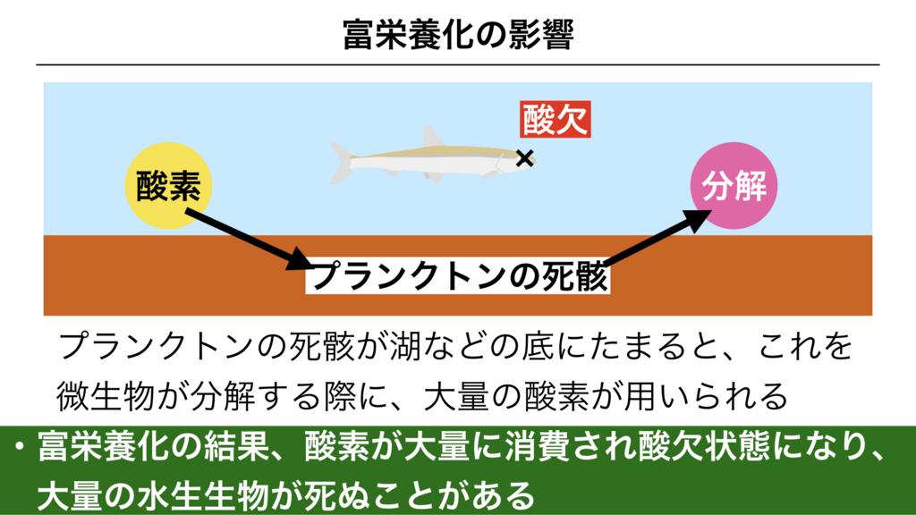 f:id:shimasensei:20180422181841j:plain