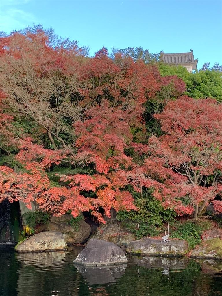 f:id:shimashimamugi:20201203224322j:image