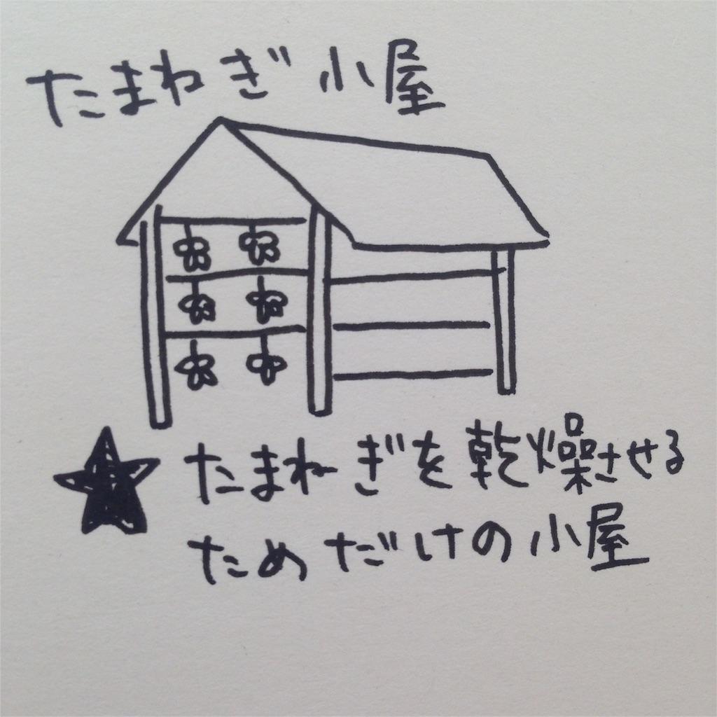 f:id:shimashimanegigi:20160817064754j:image