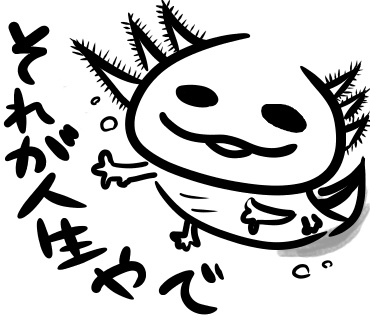 f:id:shimashimanegigi:20161104074713j:plain
