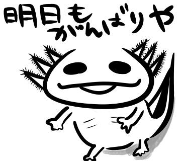f:id:shimashimanegigi:20161107062213j:plain