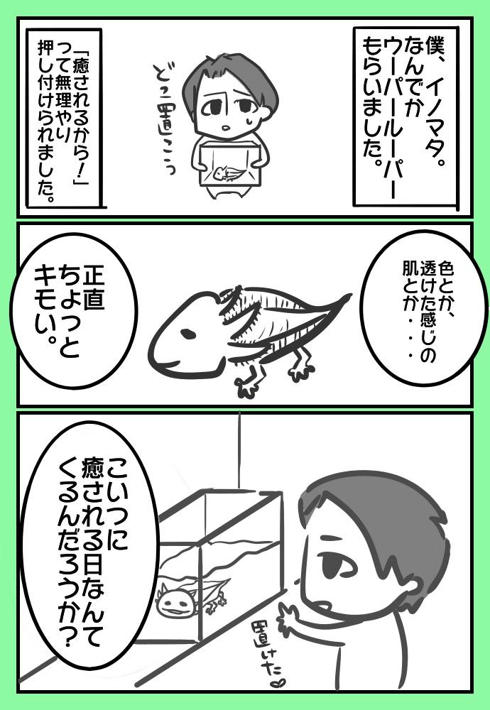 f:id:shimashimanegigi:20161127220952j:plain