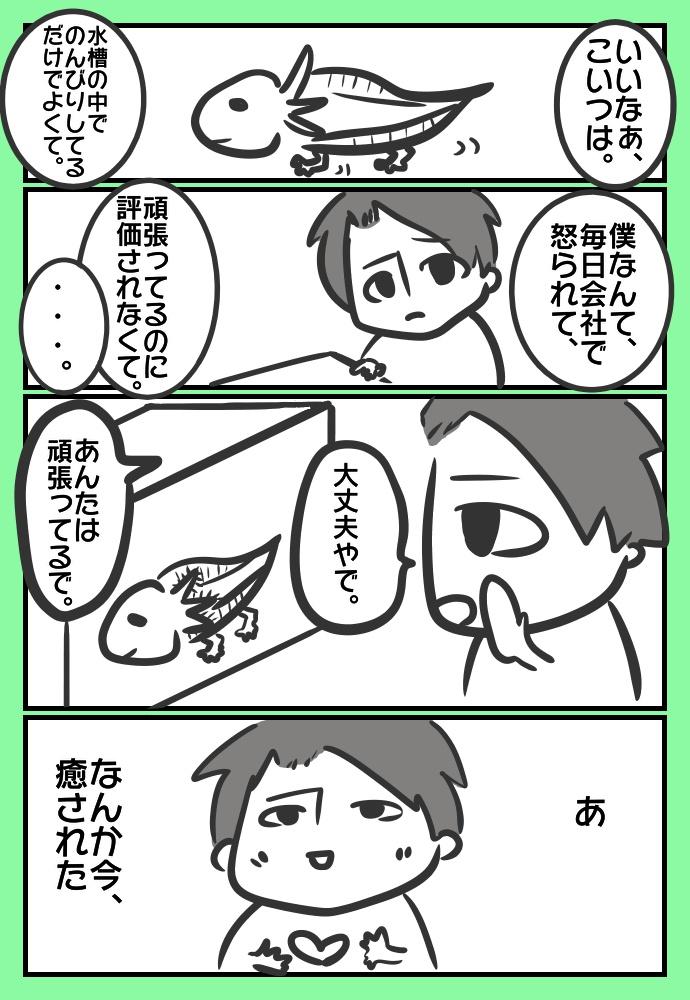 f:id:shimashimanegigi:20161127221014j:plain