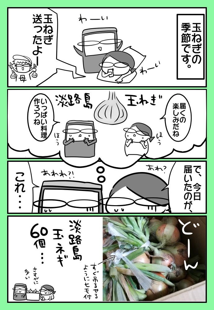 f:id:shimashimanegigi:20170606225326j:plain
