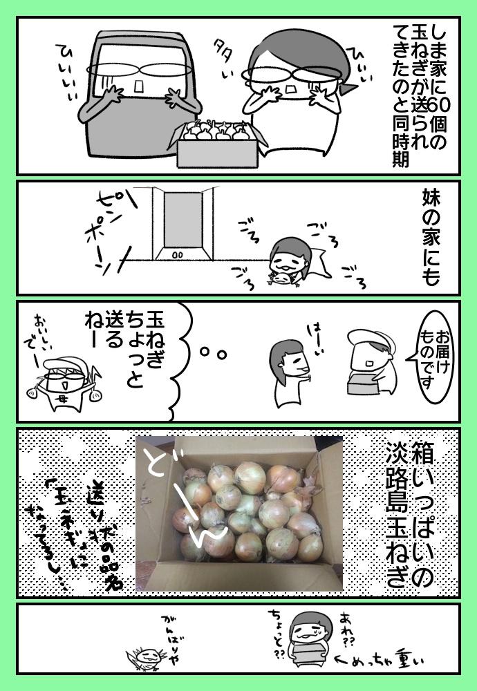 f:id:shimashimanegigi:20170621231345j:plain