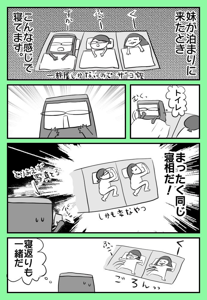 f:id:shimashimanegigi:20170920225248j:plain