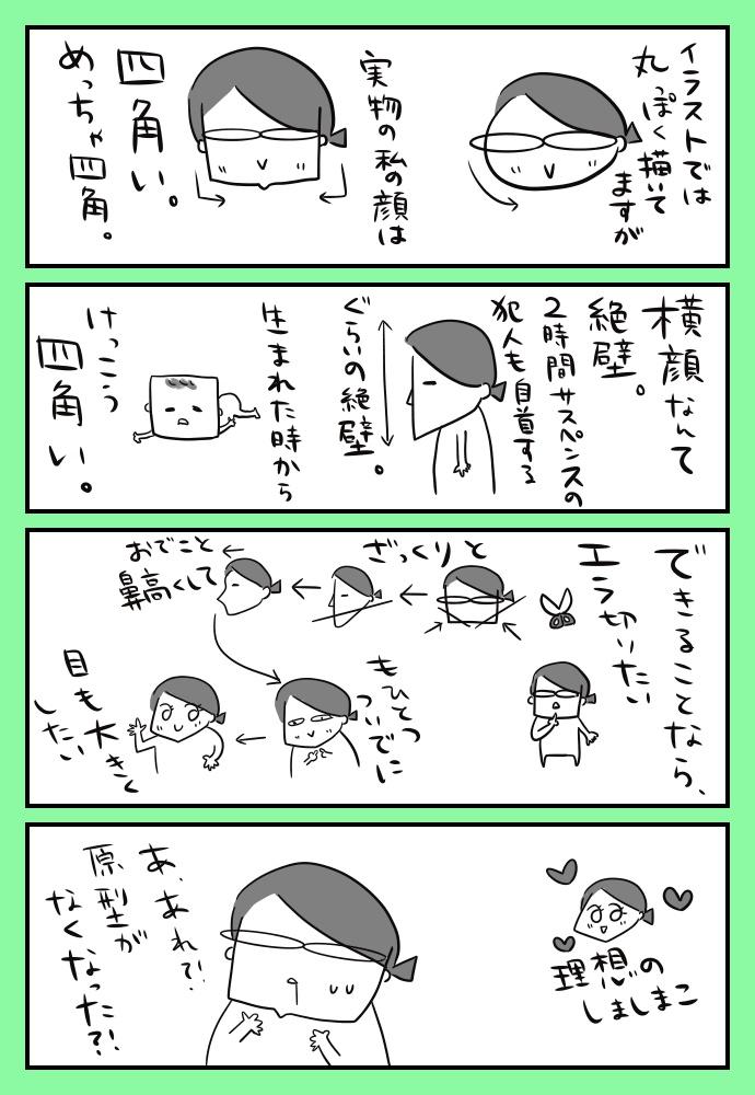 f:id:shimashimanegigi:20171114193708j:plain