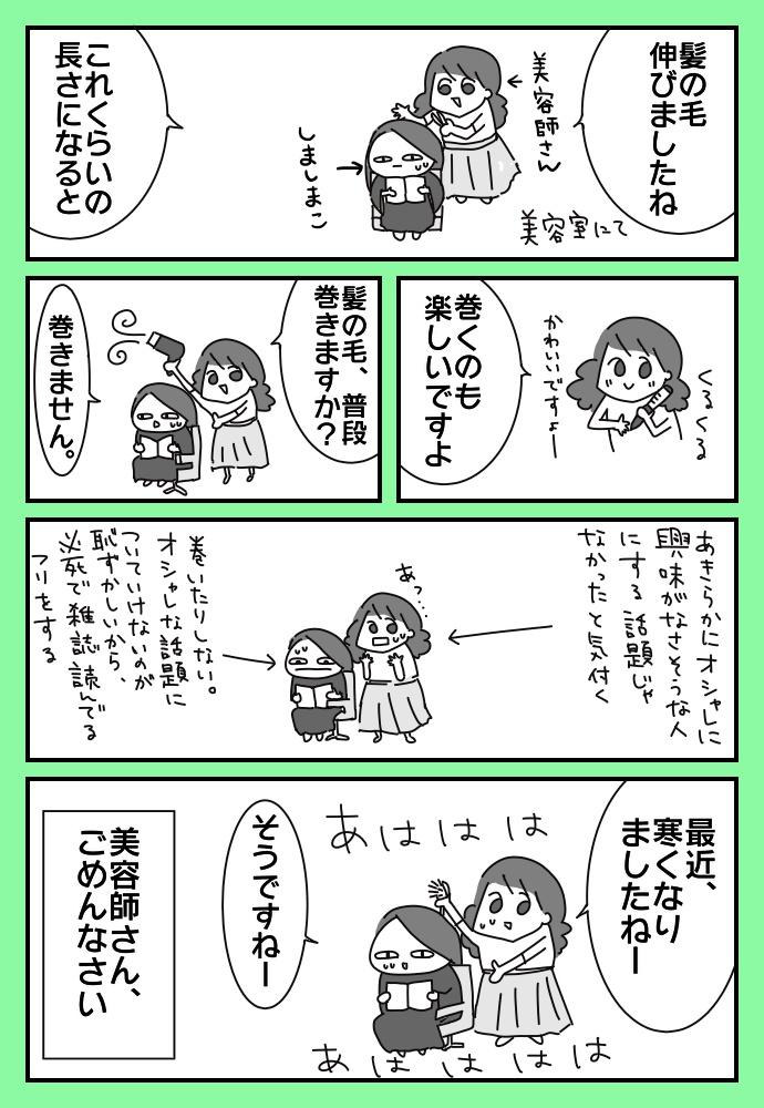 f:id:shimashimanegigi:20171118212536j:plain