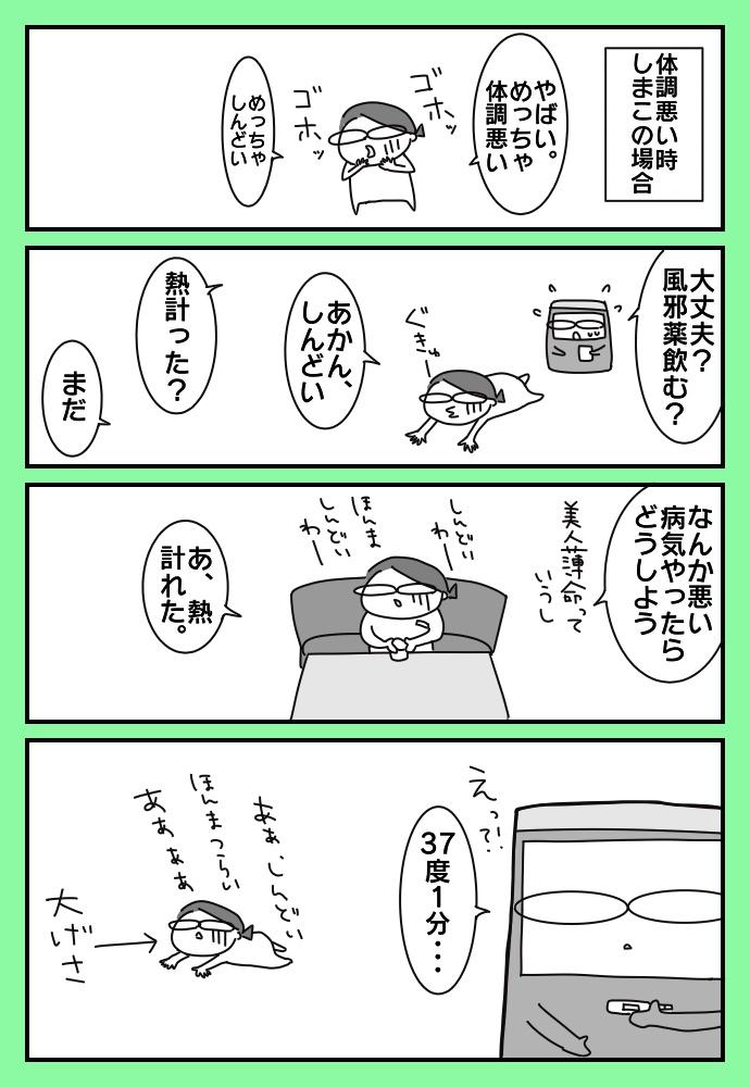f:id:shimashimanegigi:20171124235120j:plain