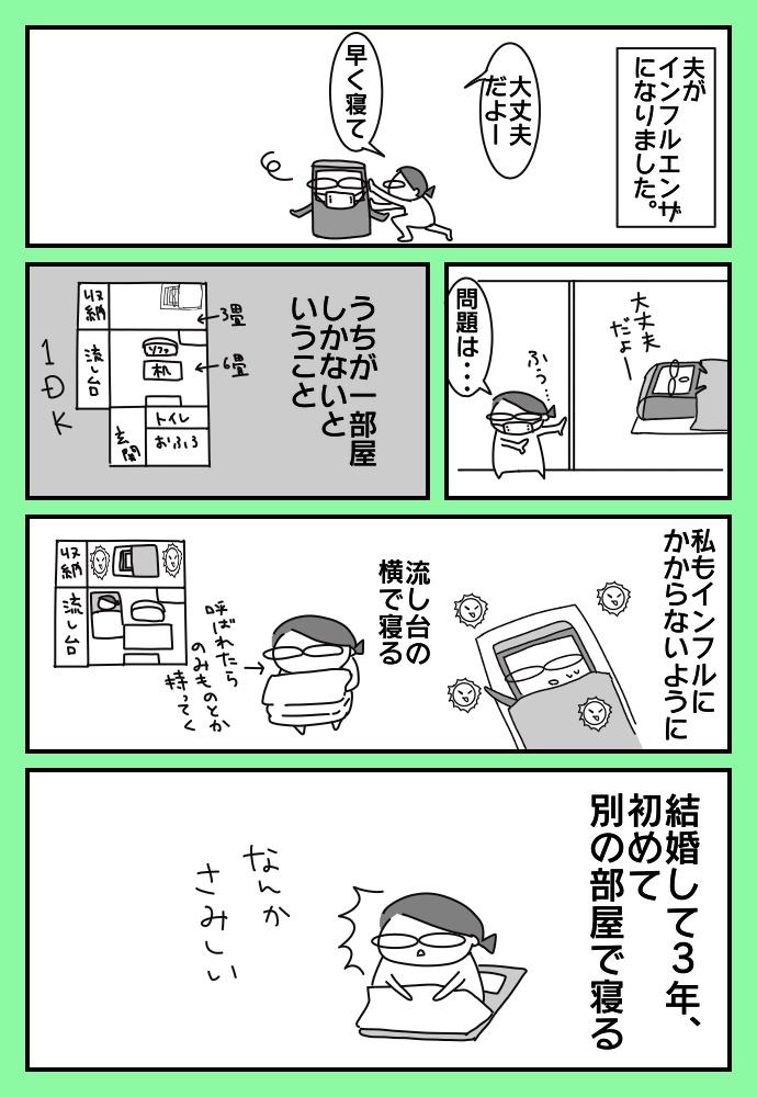f:id:shimashimanegigi:20171126220057j:plain