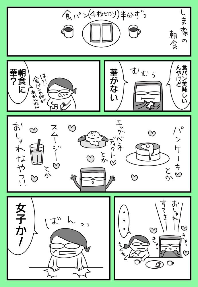 f:id:shimashimanegigi:20171209201315j:plain
