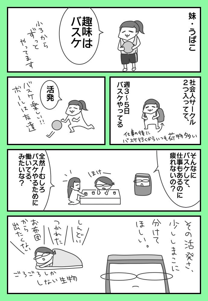 f:id:shimashimanegigi:20180114215649j:plain