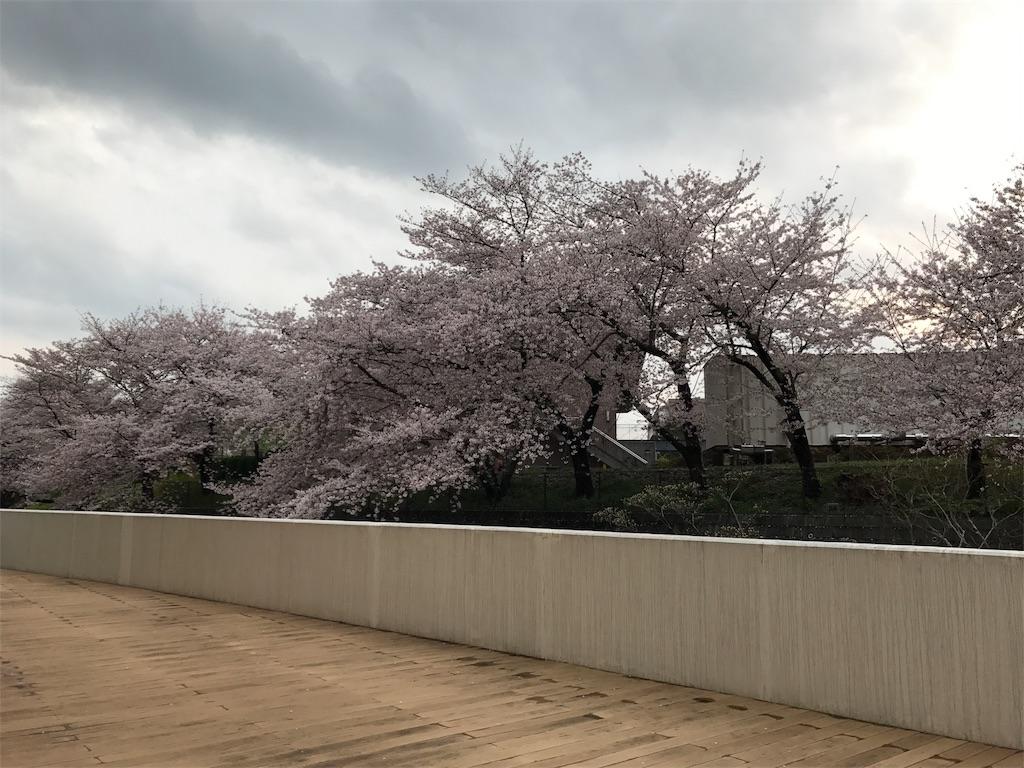 f:id:shimata777:20170411062355j:image