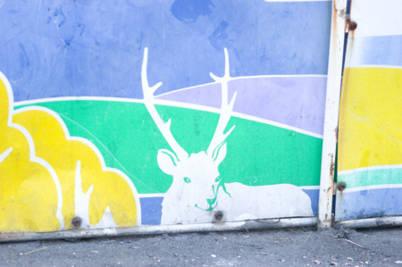 f:id:shimatto:20060110160930j:image
