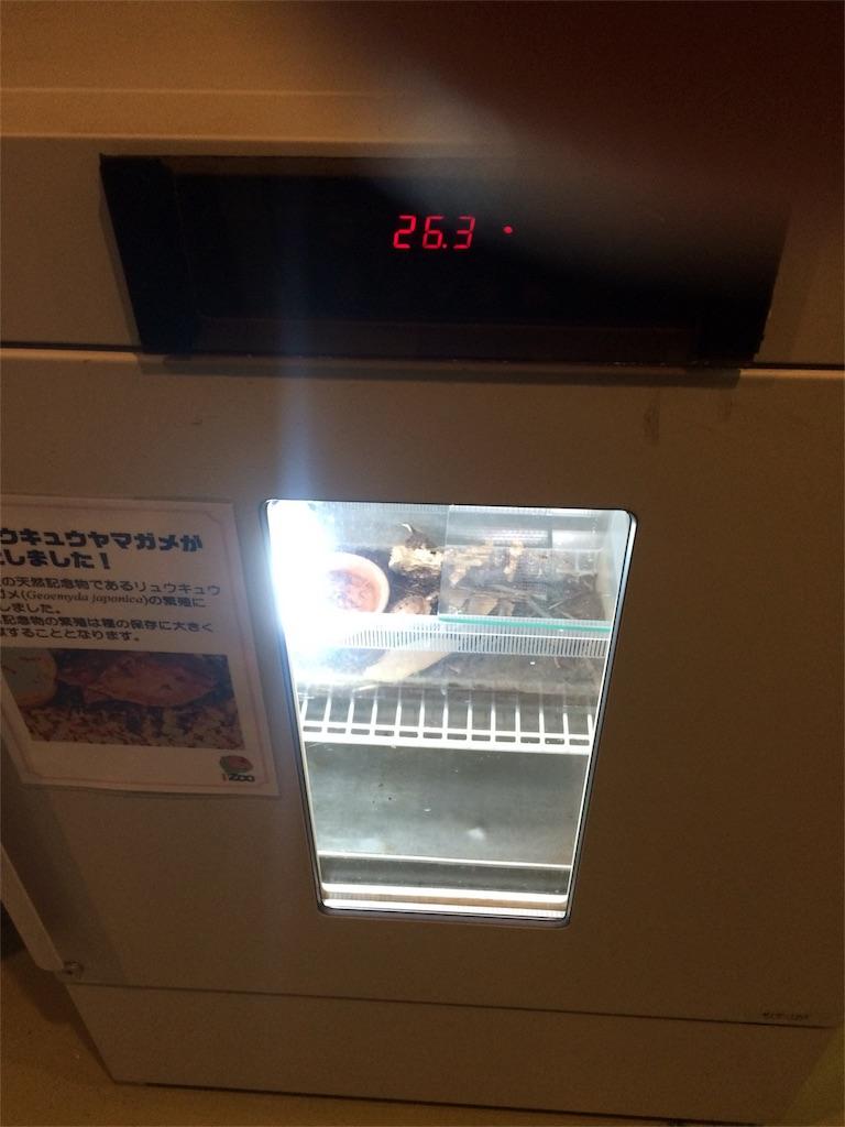 f:id:shimauma2692:20170624175443j:image
