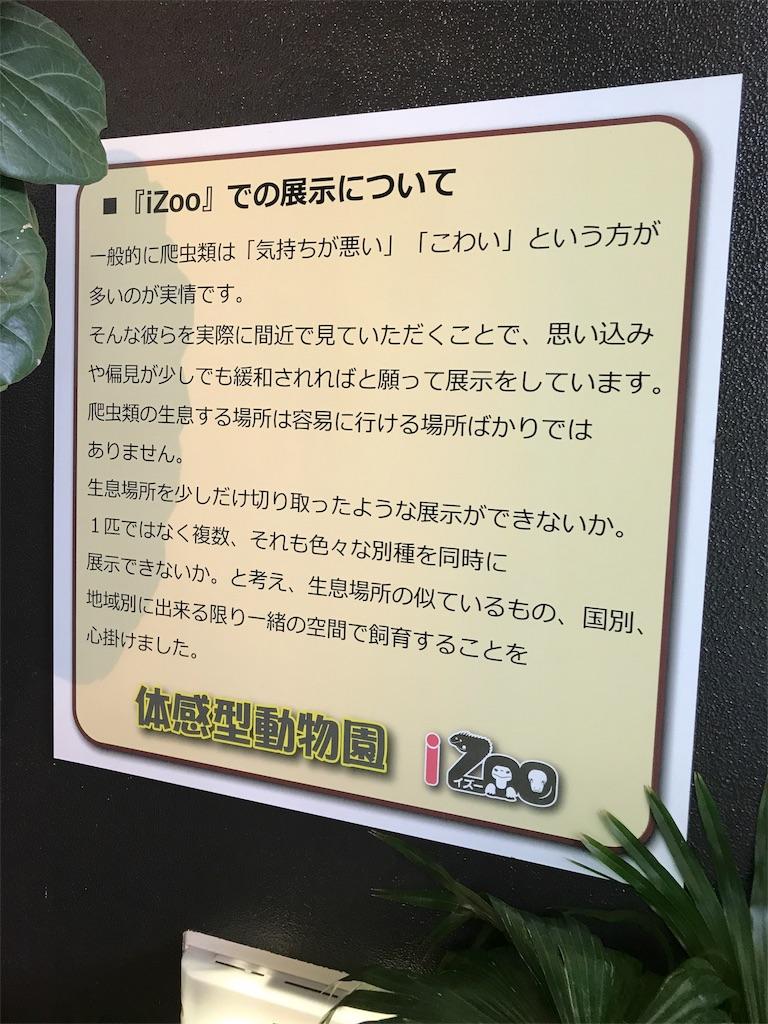 f:id:shimauma2692:20171015080137j:image