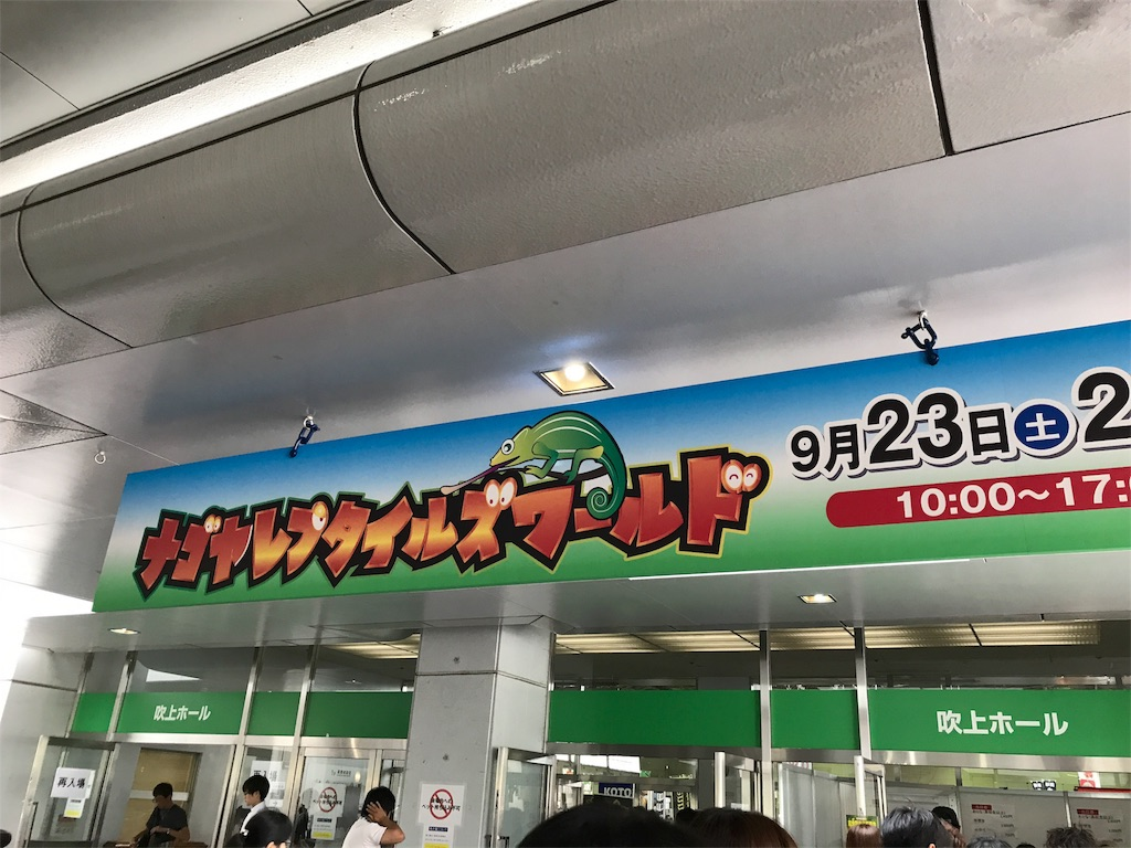 f:id:shimauma2692:20171031152734j:image
