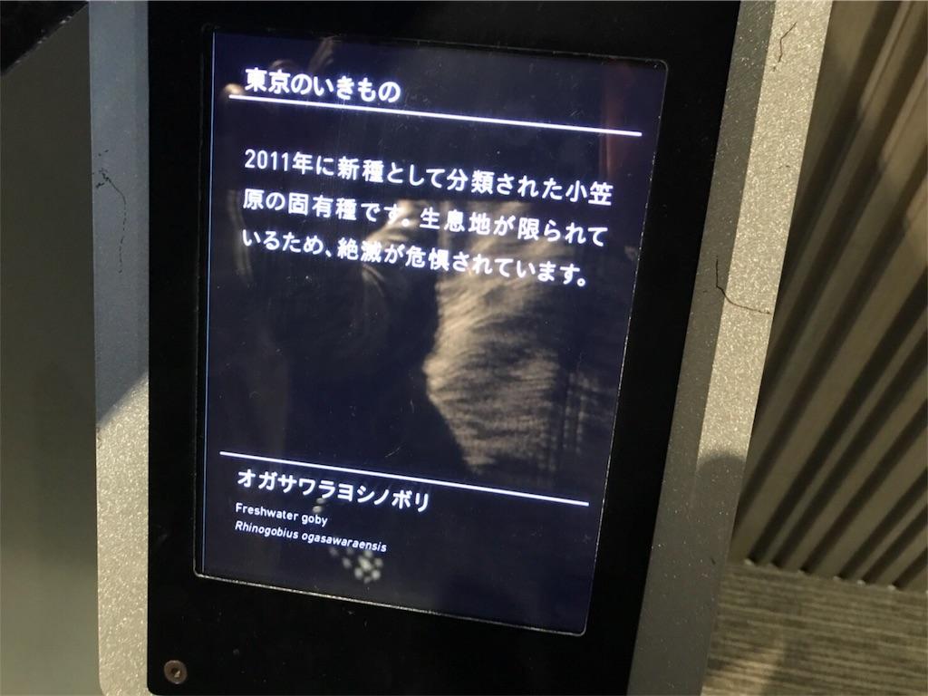 f:id:shimauma2692:20171124162942j:image