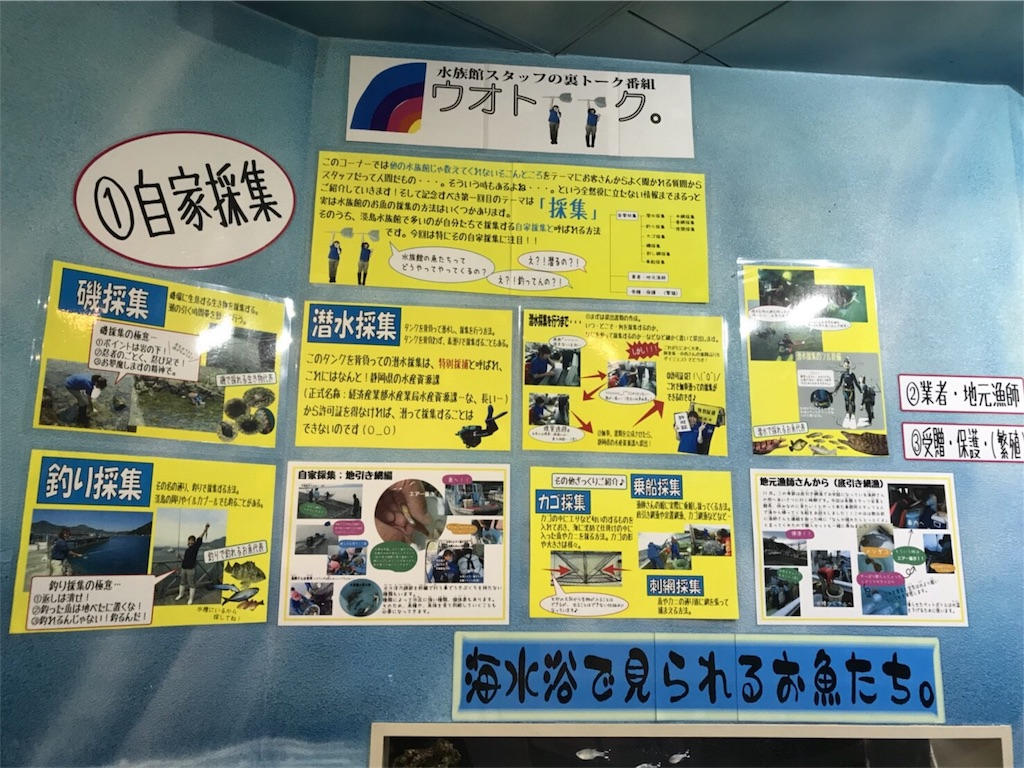 f:id:shimauma2692:20171218001122j:image