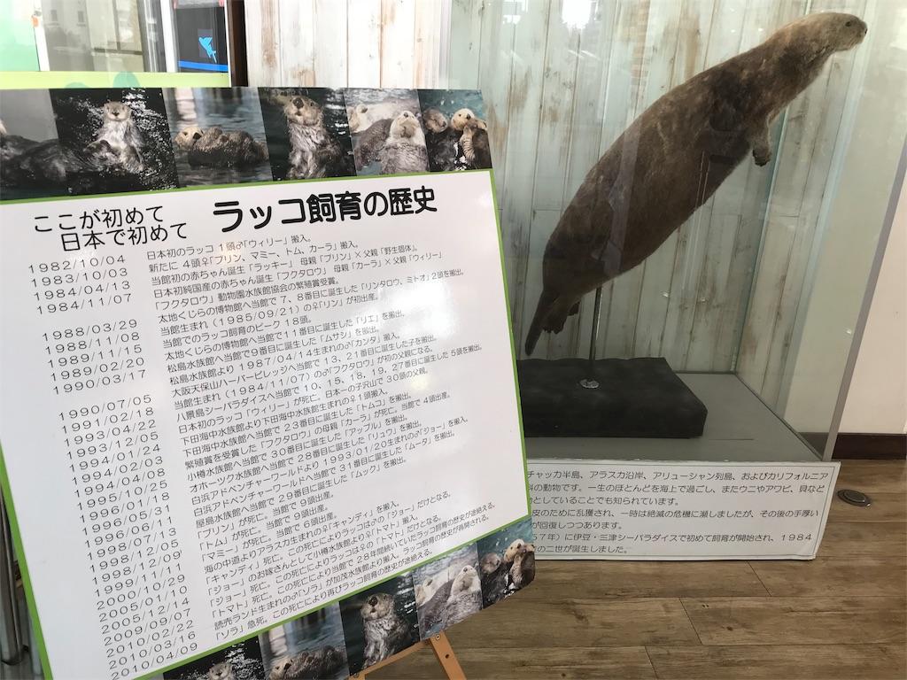 f:id:shimauma2692:20180115152902j:image