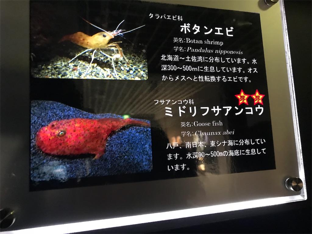 f:id:shimauma2692:20180115233726j:image