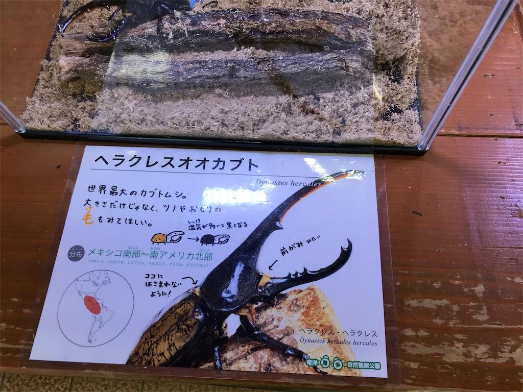 f:id:shimauma2692:20180205210128j:image