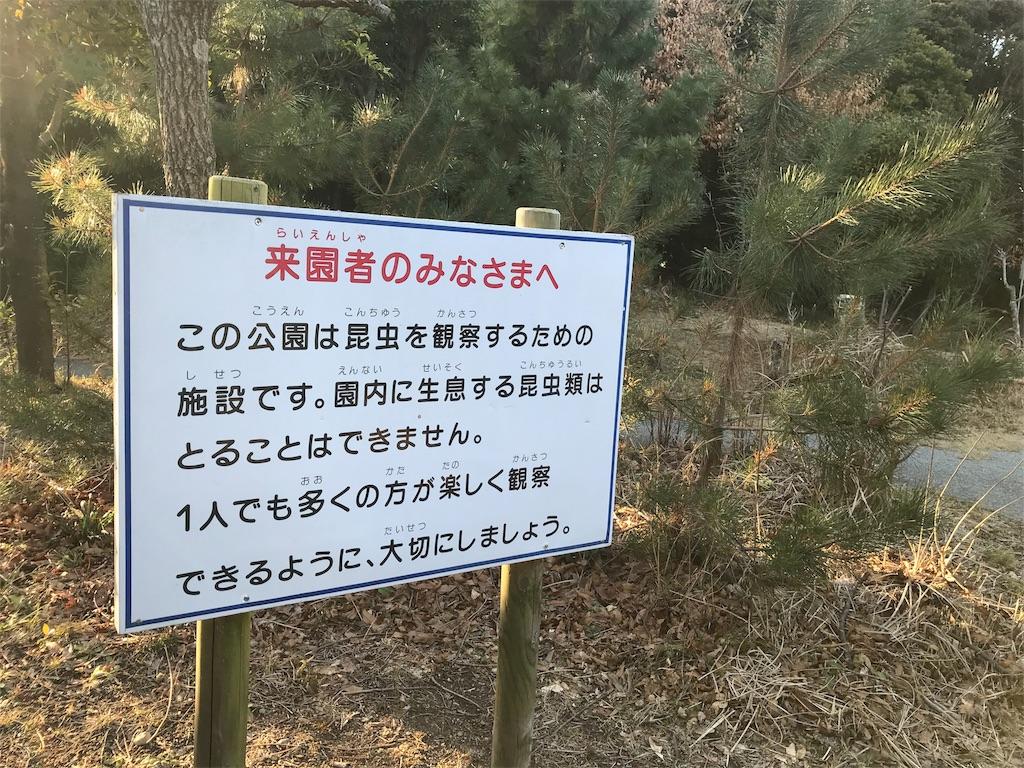 f:id:shimauma2692:20180206102455j:image