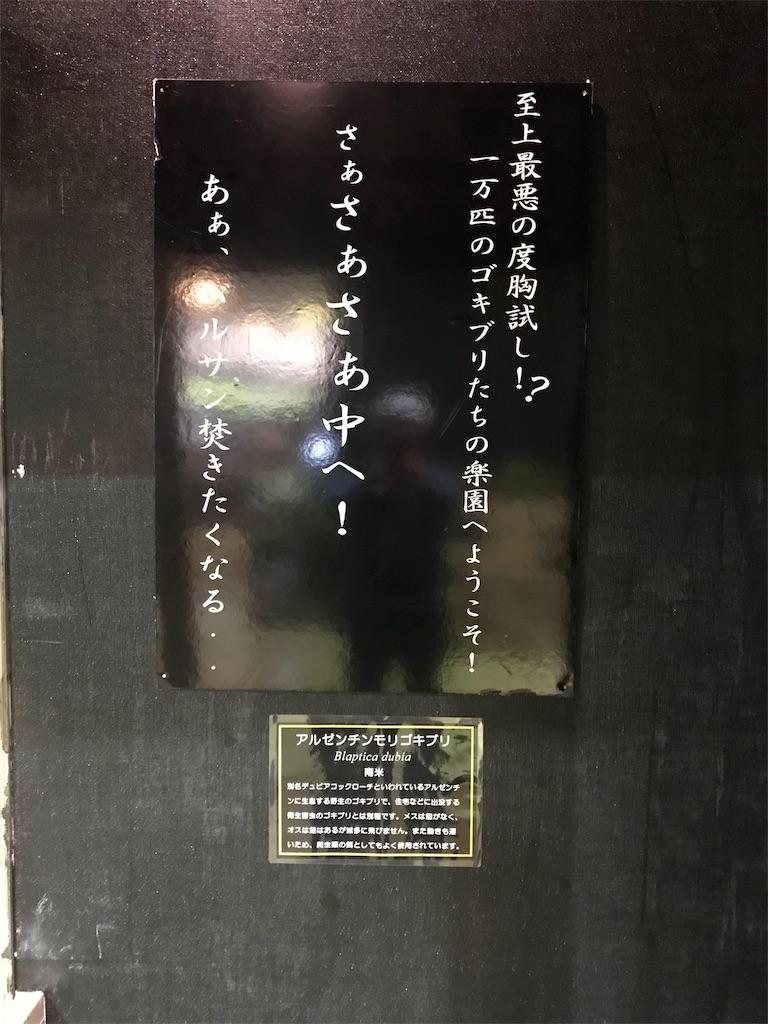 f:id:shimauma2692:20180316152131j:image
