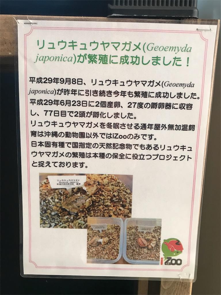 f:id:shimauma2692:20180318120751j:image