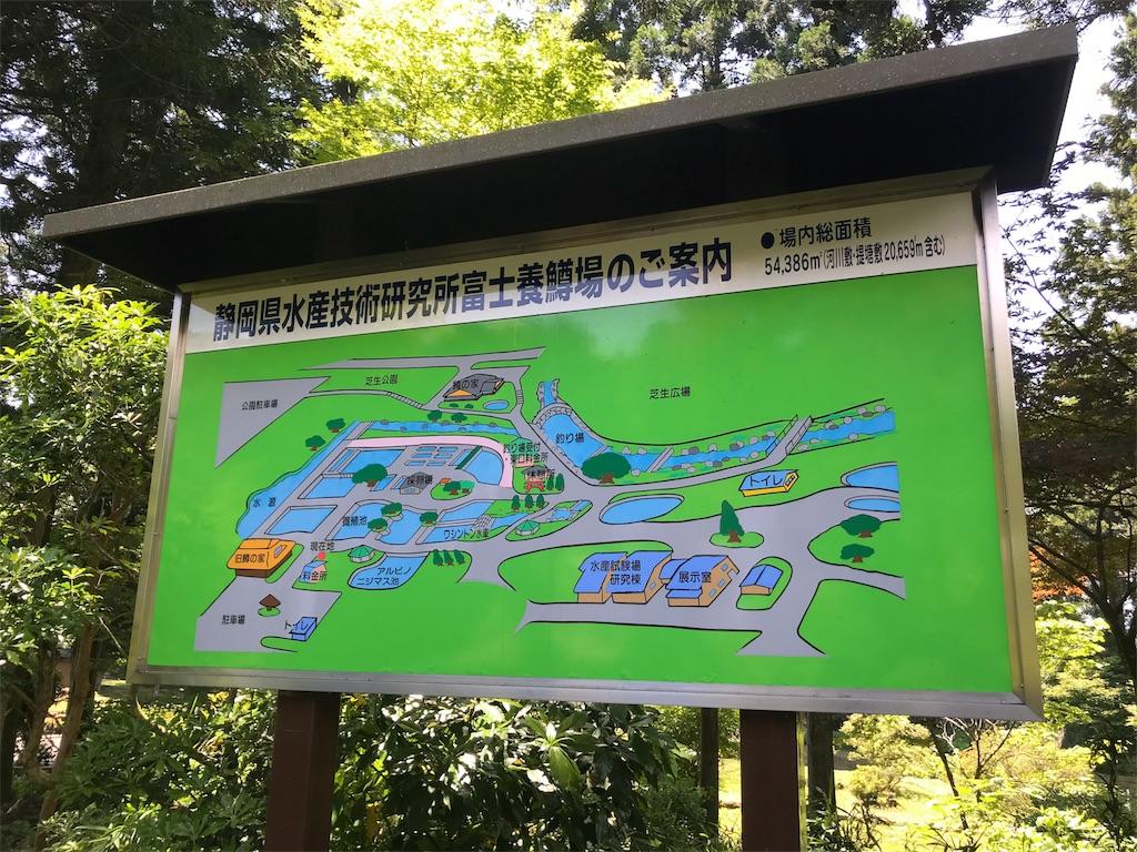 f:id:shimauma2692:20180610042915j:image