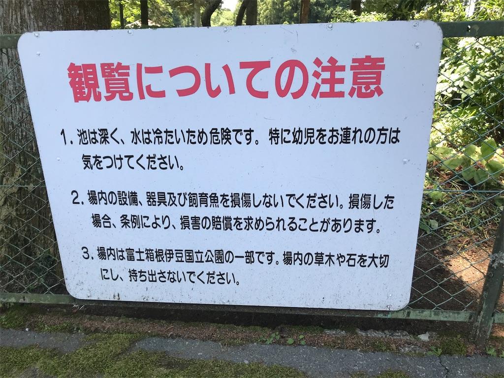 f:id:shimauma2692:20180610042923j:image