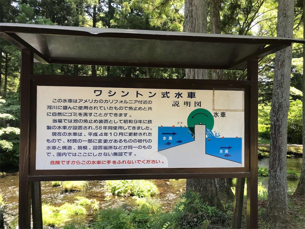 f:id:shimauma2692:20180610084115j:image