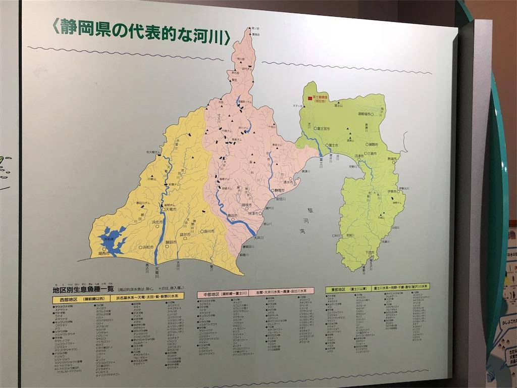 f:id:shimauma2692:20180610085413j:image