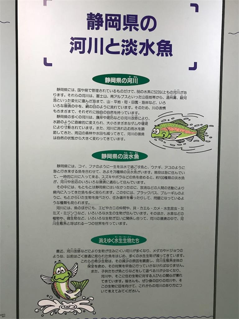 f:id:shimauma2692:20180610085417j:image