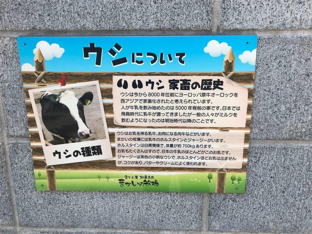 f:id:shimauma2692:20180610095333j:image