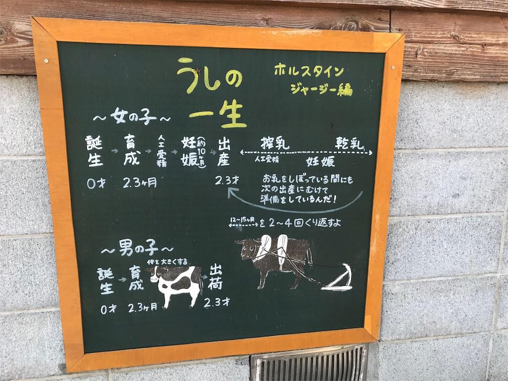 f:id:shimauma2692:20180610095438j:image