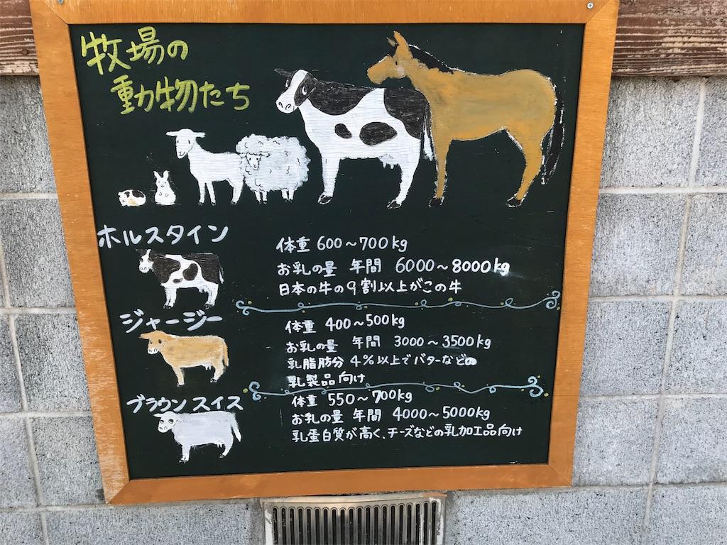 f:id:shimauma2692:20180610095454j:image