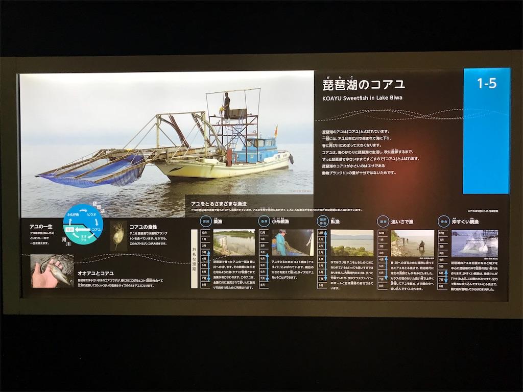 f:id:shimauma2692:20180621200618j:image