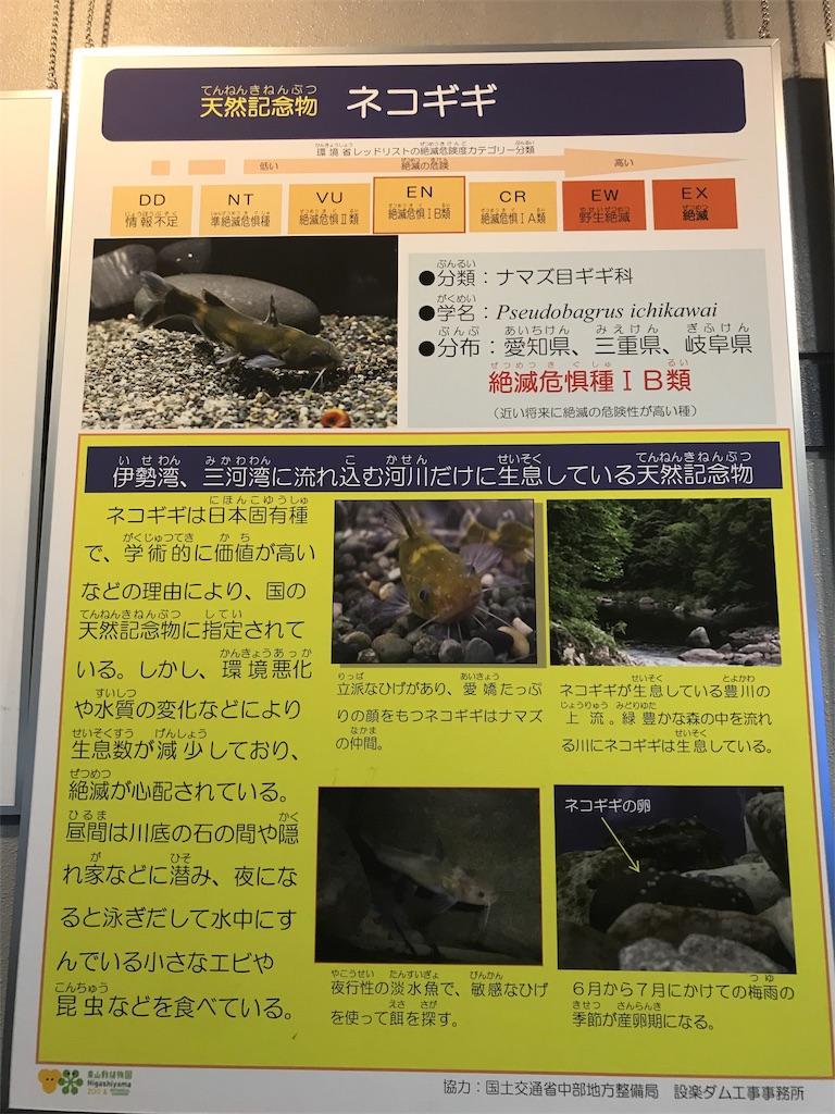 f:id:shimauma2692:20180628182857j:image