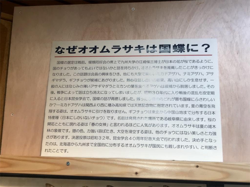 f:id:shimauma2692:20180817082502j:image
