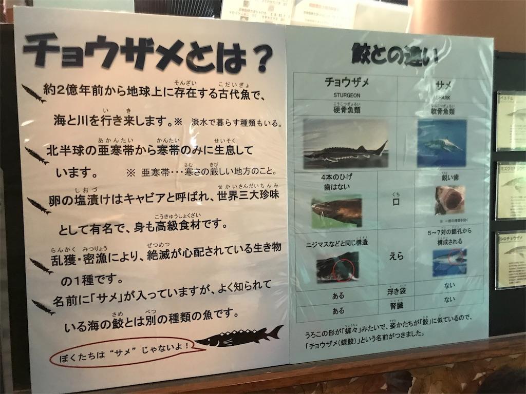 f:id:shimauma2692:20180817103509j:image