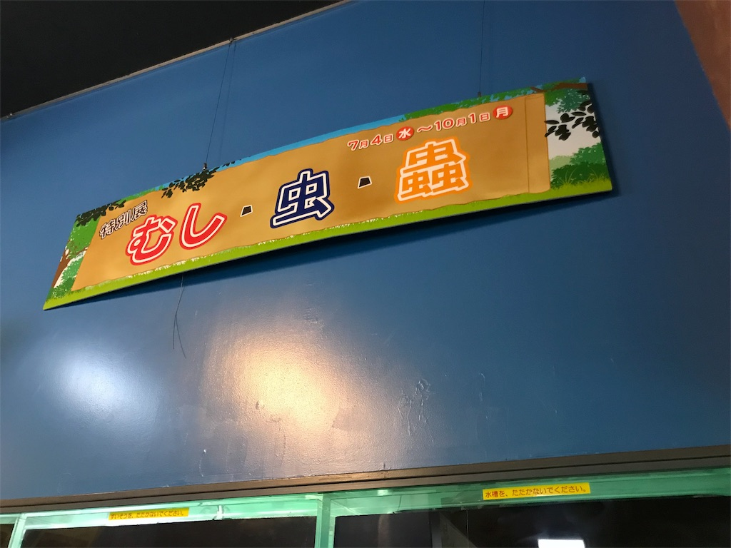 f:id:shimauma2692:20180819140058j:image
