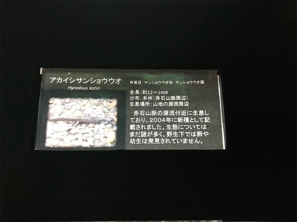 f:id:shimauma2692:20180824191145j:image