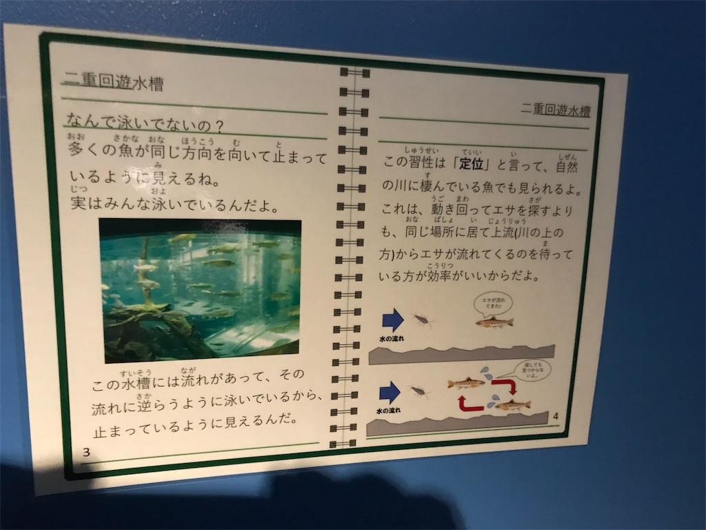 f:id:shimauma2692:20180825190934j:image