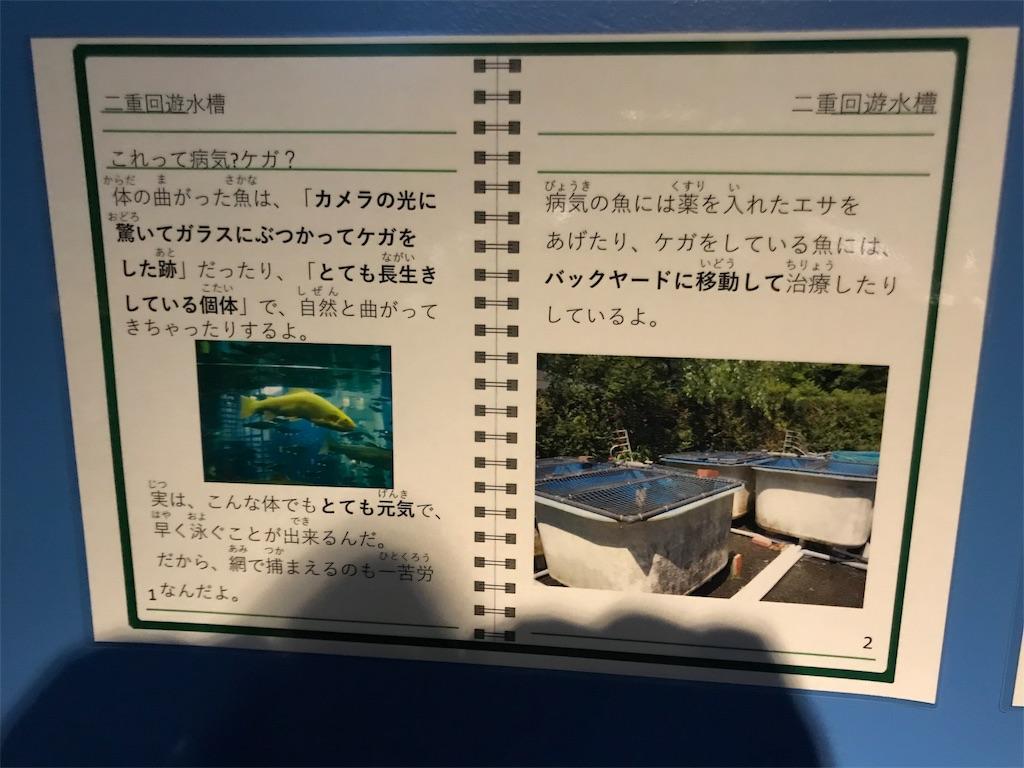 f:id:shimauma2692:20180825190938j:image