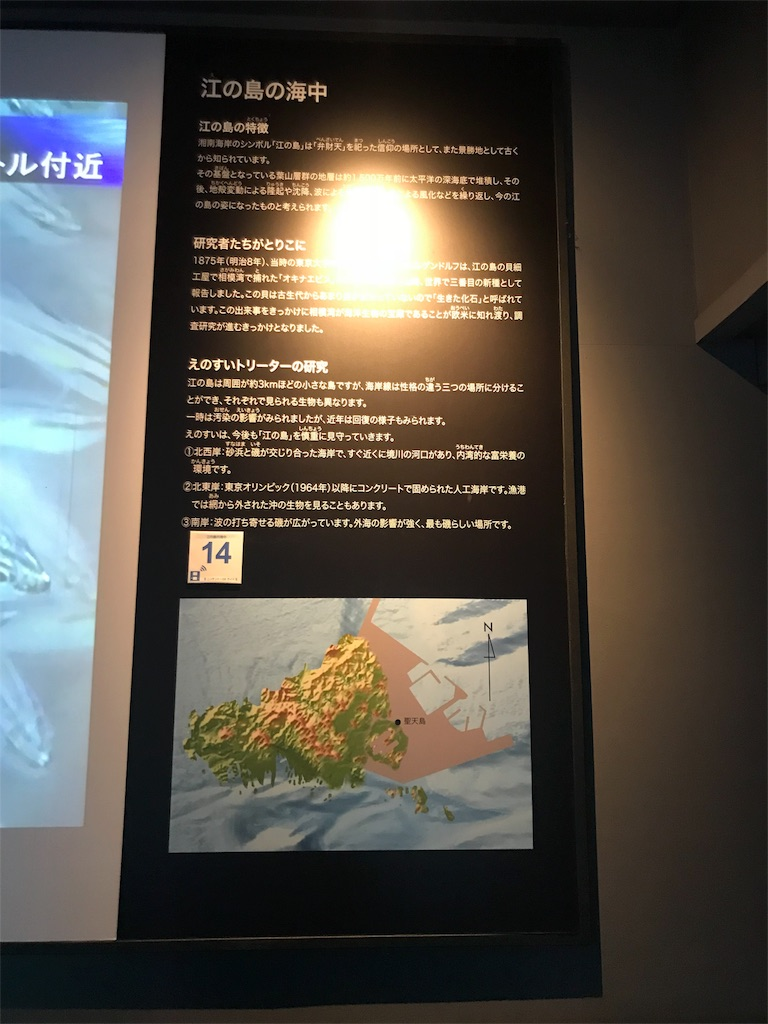 f:id:shimauma2692:20180825201028j:image