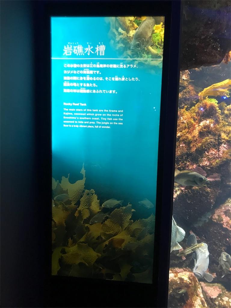 f:id:shimauma2692:20180825201039j:image