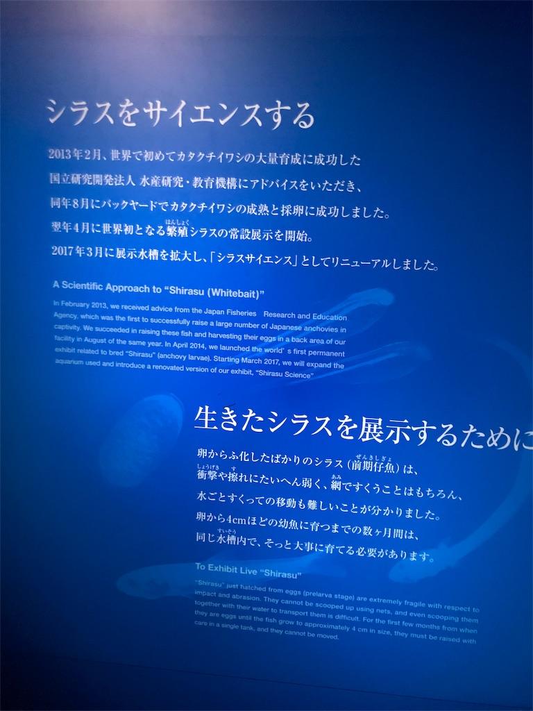 f:id:shimauma2692:20180825201226j:image