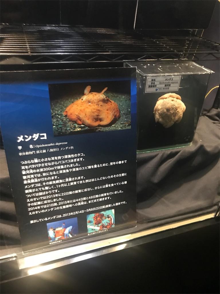 f:id:shimauma2692:20180826074331j:image